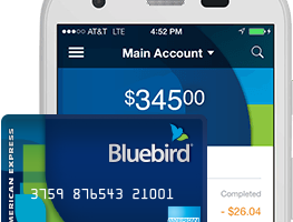 """Bluebird App Review"""